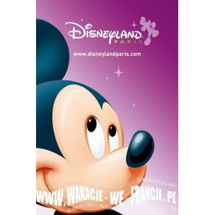 """BILET DO DISNEYLANDU - 1 DZIEŃ 2 PARKI """"SUPER MAGIC""""- NORMALNY"""
