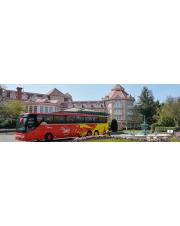 BILETY NA TRANSFER AUTOBUSEM Z LOTNISKA CHARLES DE GAULLE DO HOTELU SIECI DISNEYLAND - ULGOWY (w obie strony dla jednej osoby)